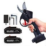 HEYPORK Secateur Electrique Sans Fil, Secateur Professionnel avec Batterie 2 Piles Rechargeable et...