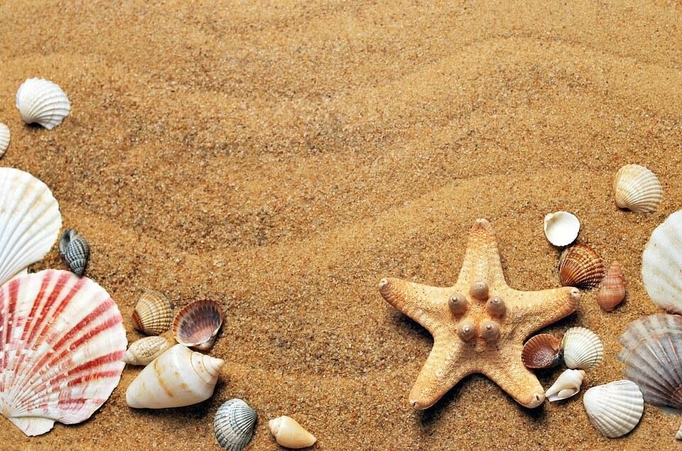 15 idées pour s'occuper à la plage