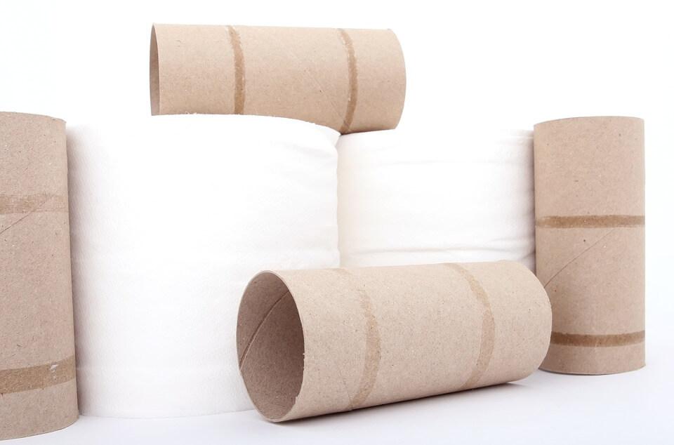Rouleau de papier toilette - quelques astuces pour le recycler