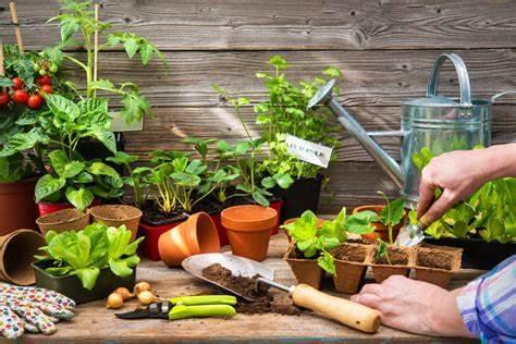 Les 7 outils de jardinage indispensables