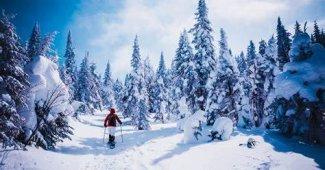 Top 9 des activités au Canada en Hiver